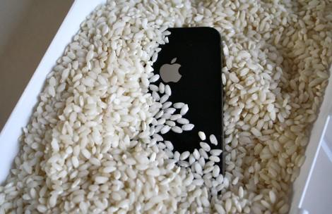 iPhone в рисе