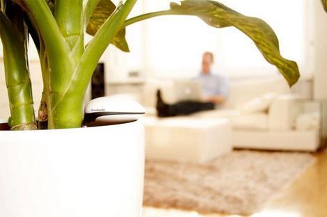 Koubachi-Wifi-Plant-Sensor