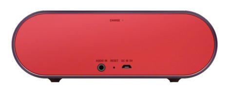 Sony-PumpX-SRS-X21