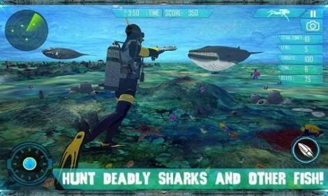 Spear fish hunter 2016 Scuba deep dive