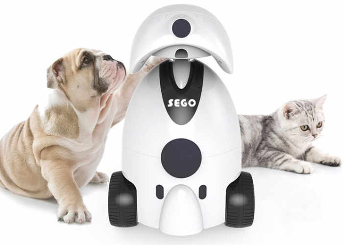 sego-robotic-pet-companion