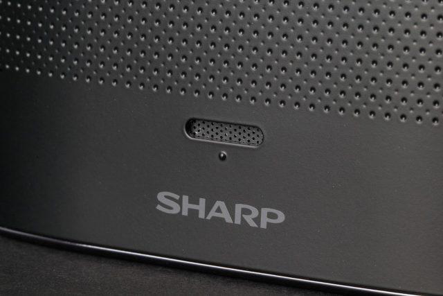 sharp-aquos-crystal-rear-speaker-detail-640x427